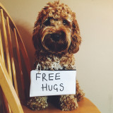 Free hugs everyone!