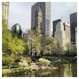 A view from the Central Park, New York City's most famous park.