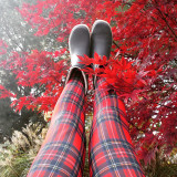Red tartan legs stretching up into the autumn leaves