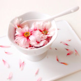 Pink flowers in an ice cream cup