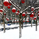 A snowy day in Toronto