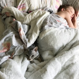 Boy sleeping with a cute bengal cat hiding in bedsheets