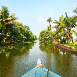 Cruising in the backwaters (Kerala, India)