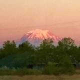 Mount Rainier at sunset.  Looks like a painting to me.   🌟NOMINATED🌟