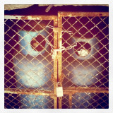 staring back at me, these two beings smiling shared captivity waiting to be freed.