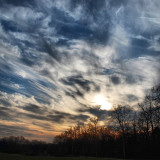 This is another pic took in Monza city park, at the sunset.