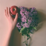 Studio shot of hand holding apple and lilac