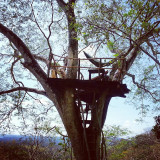I took this picture backpacking Nicaragua. It is of the treehouse poste rojo hostel. People call it the monkey deck.