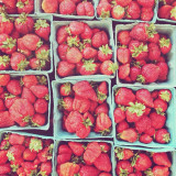 Freshly picked strawberries in cartons