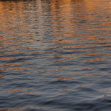Taken by me at the Udaipur Lake Palace Hotel during sunset. Was able to get this beautiful