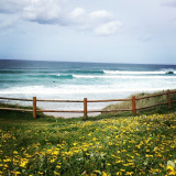 Surfing in Galicia, Spain