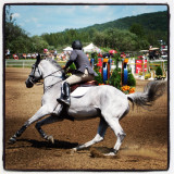 rider taking a turn during a show jumping competition