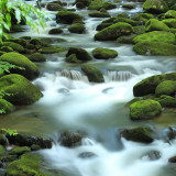 Taken 6-21-13 on a lovely drive through Roaring Fork Motor Trail in Gatlinburg, TN.  Maybe my all time favorite water shot thus far.