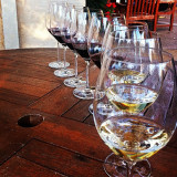 Stags Leap Wine tasting