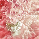 Beautiful pastel pink hydrangea for a vintage shabby chic look