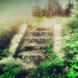 These steps were found in Farragut State Park, Idaho. They rose out of the earth, covered in moss, accompanying an old lime kiln.