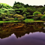 Gloomy day at the Imperial Palace Garden, Tokyo, Japan