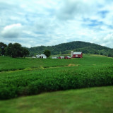 charming lovely little farm at the base of the mountains in western Virginia.