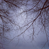 Don't really remember when, but some kind of winter sky at this college.