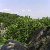 Off the edge of the King and Queen's Seat in Rock State Park in Maryland, summer 2013.