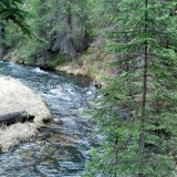 A swift creek rushes through the wilderness,  You can hear the splashing of water against the rocks and the breeze through the trees.  The smell of pine surrounds you.  This is true nature.