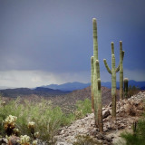 The view from the top  - a desert landscape with the remnants of a summer storm in the backdrop