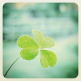 . .I don't need luck. .
