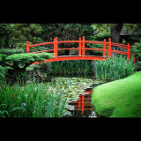 Japanese Gardens, Irish National Stud, Co. Kildare, Rep. of Ireland