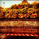 Oranges being delivered to a market in Luis Eduardo Magalhaes, Bahia, Brazil.