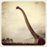 #instalover #instagramers #dino #germany #big #neck #nature # animal
