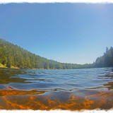 Cypress Lake on Cypress Island. Swimming in the copper toned lake listening to Bald Eagles talk back and forth is a great way to spend the 4th of July.