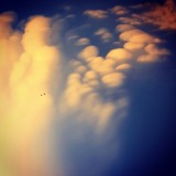 There are no rules of architecture for a castle in the clouds. ~G.K. Chesterton