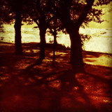 For a few days we'll have Indian #summer. I want that old striped bathing suit.  #climate #weather #forecast #trees #sea #shadows #nature #autumn #fall #reflections #sepia