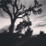 His was a fall night drive in my town Visalia CA :)