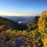 Good morning, Marin!  This one shows Bon Tempe Lake from the top of Mt Tam. @bluewatersmarin #MMWD #fall #yellowmonday #colorsoftheweek
