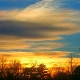 Sunset on 2012#sunscape #sunset #skylines. #skyscapes #clouds #sky #trees #horizon #awe #nature #newengland