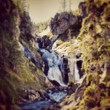 #yellowstone #national #park #mystic #fall #usa #us #wyoming #river