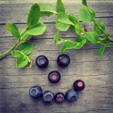 #blueberry #blueberrys #finland #green #blue #wood #forest #plant #flower #nice #cool #tree #swag #instaswag #nature #smile #smiley #summer #summertime #cool #north #lake #emoji #yolo #hip #hipster #retro #vintage