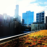 Green Roof of the CTA Headquarters building facing the Chicago River and the Loop the Civic Opera House, Hyatt Center, and the Willis (Sears) Tower in the background.