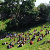 #hill #park #trinity #bellwoods #crowd #spectators #summer #beautiful #day #toronto