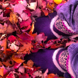standing in a pile of leaves on a crisp cool morning in fall! I remember this day in November