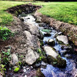 #creek #lol #pretty #natufe #facebook #instagood #instAnature #wow #beautiful #water #stream #woah #awe #smile #cute #happy #house #yard #yolo #swagger #swerve #lol #jk #love #scenery