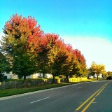 Fall is finally showing it's colors #fall #autumn #trees #season #seasons #colors #driving #openroad #hdr #hdrpics #photooftheday #igdaily #instagood #picoftheday #f4f #sky #skyfanaticsunite #skyporn #skylovers #skycandy