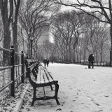 this couple just got engaged in Central Park 12/14/13