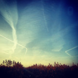 Vapour trails and field