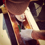Tagging seatrout