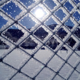 Frost-covered fence