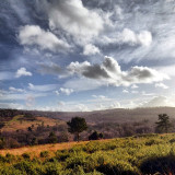 Had to travel through Ashdown Forest today and stopped for a little scenic relaxation. The forest was originally a deer hunting forest in Norman times and is now one of the largest free public access space in the South East of England. #pictureoftheday #picoftheday #screaming_shots #fabscape_ #landscape #seasonsandlandscapes #naturehippys #naturegram #nature_shooters #naturalbeauty #nature #naturelovers #nature_seekers #nature_perfection #cloudporn #englishhistory #nothingisordinary #ashdownforest