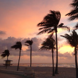 Palm trees on beach at sunset,  beach hut