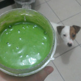 My green juice every morning, and my dog trying to see what I am doing ;)